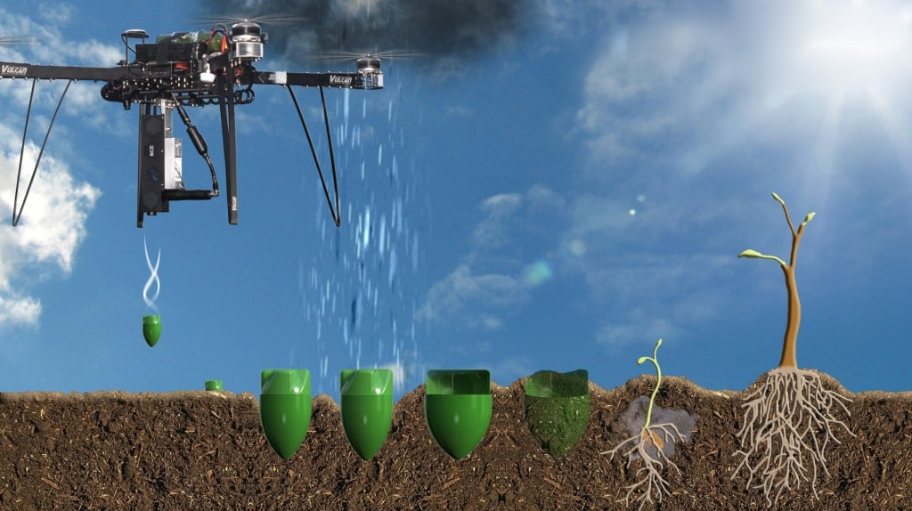 Drones plant one billion trees a year