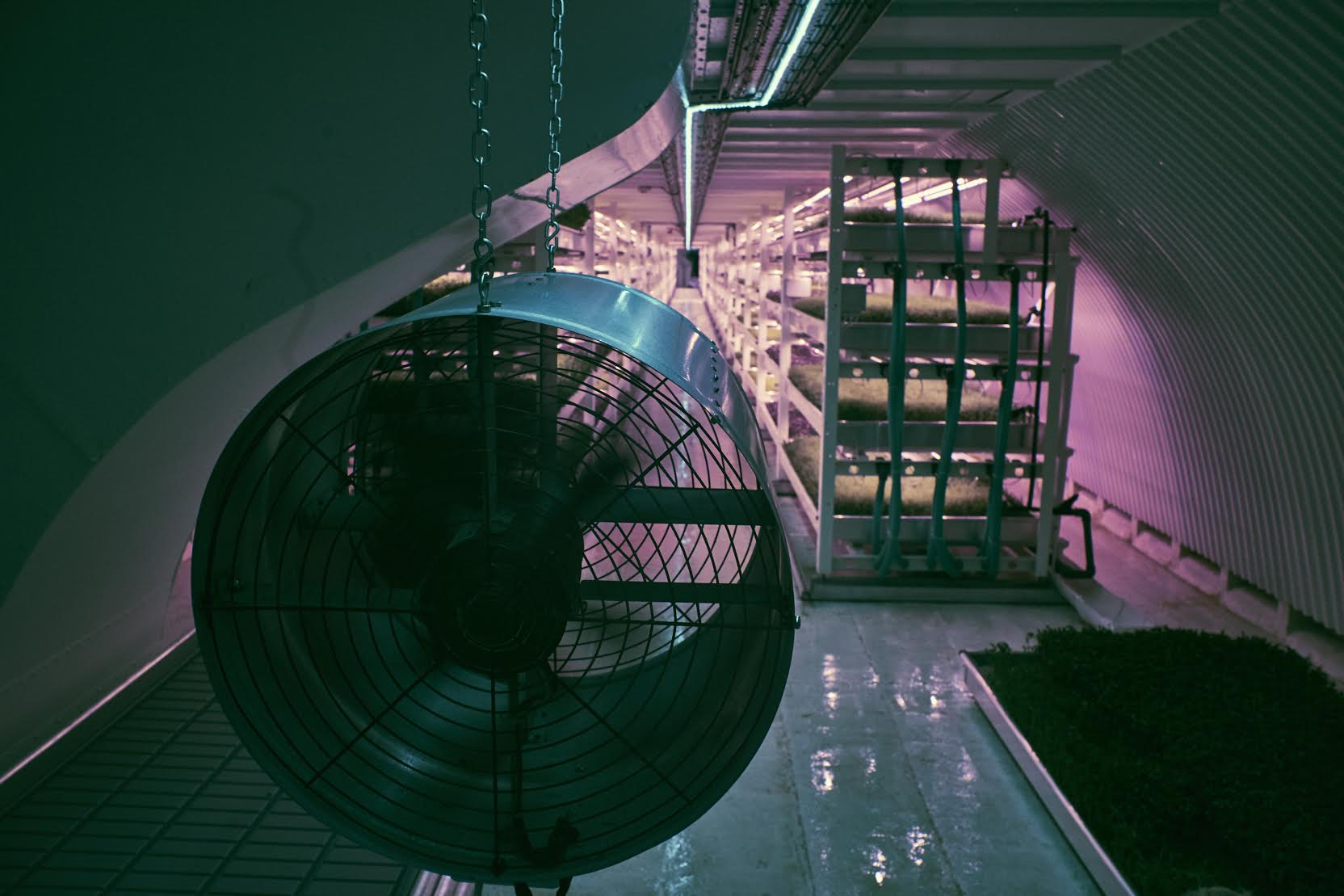 growing underground london 2