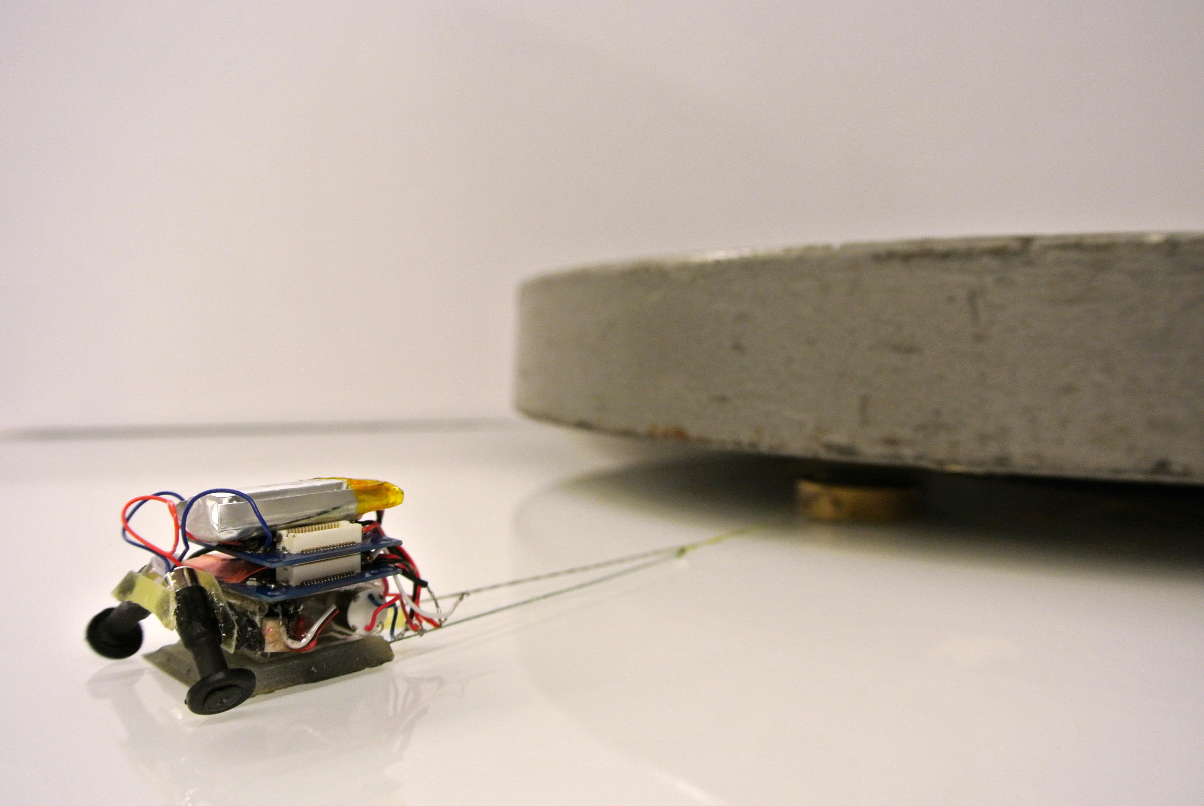 Robot geckos use the force