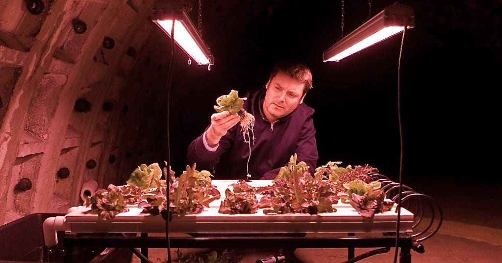 FutureHero Richard Ballard: Growing greens in bomb shelters