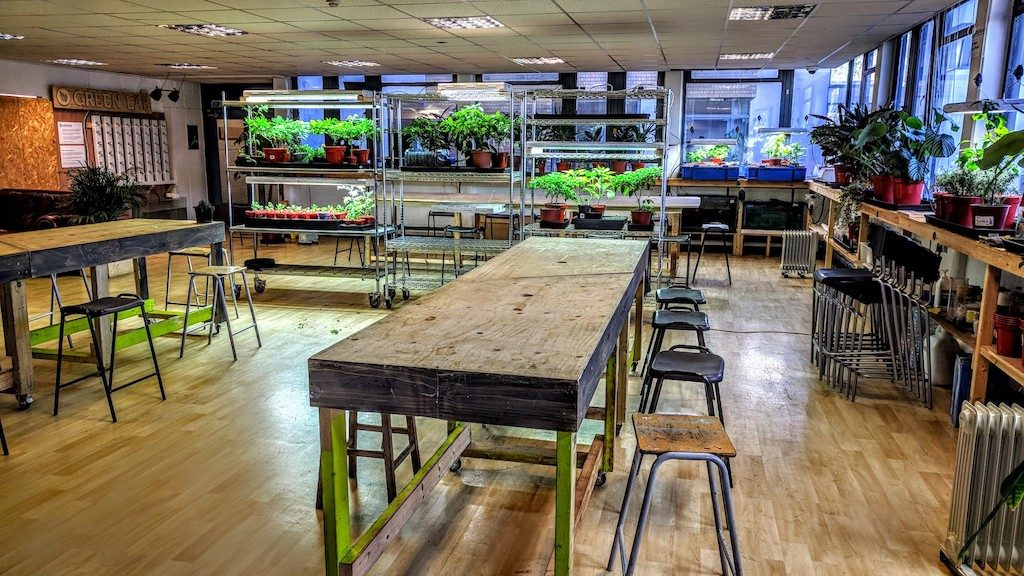 Video ► Green fingers design a better future: Inside London's Green Lab