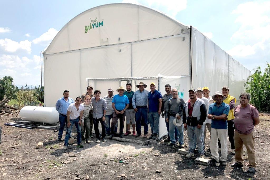 Griyum's farmers produce cricket flour