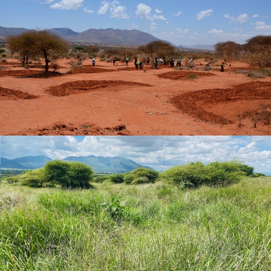 Justdiggit works with smallhold farmers in Kenya and Tanzania