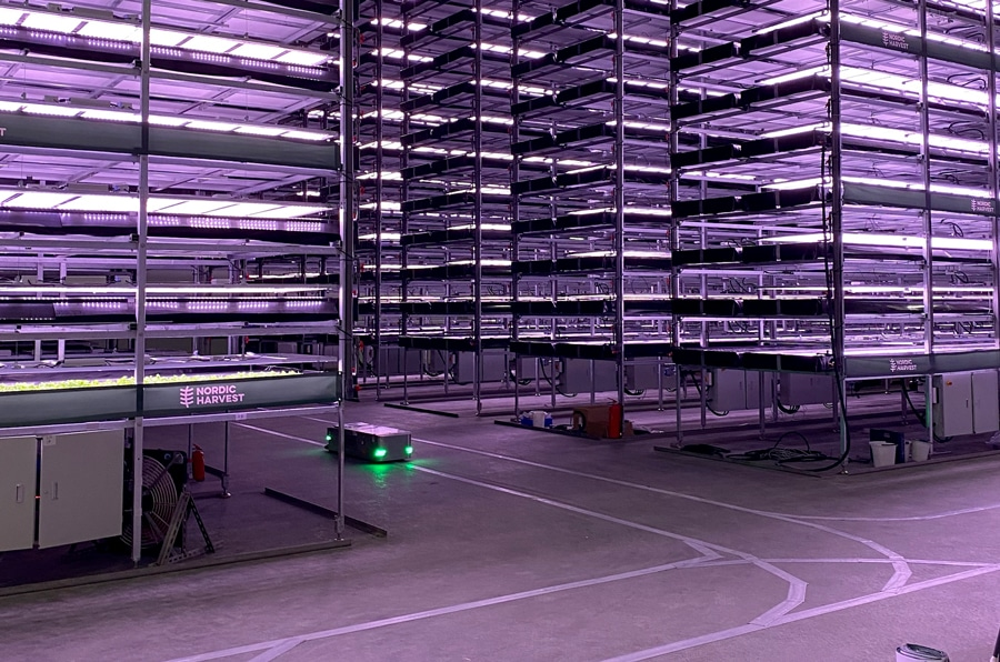 Nordic Harvest is Europe's largest vertical farm and it's powered by wind