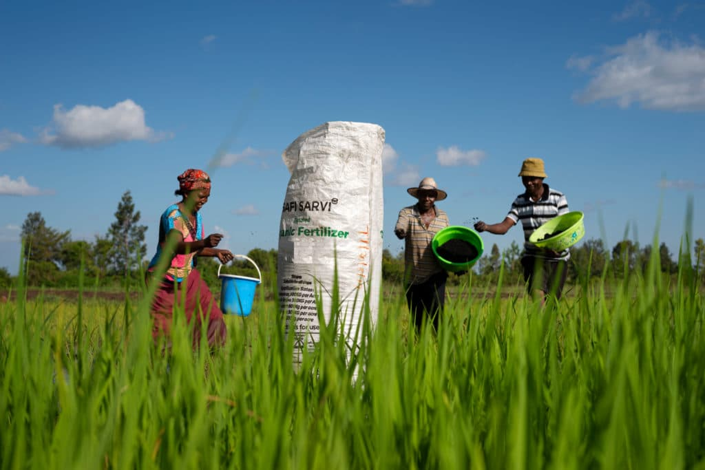 Safi organics produces compost and biochar locally for farmers in Kenya