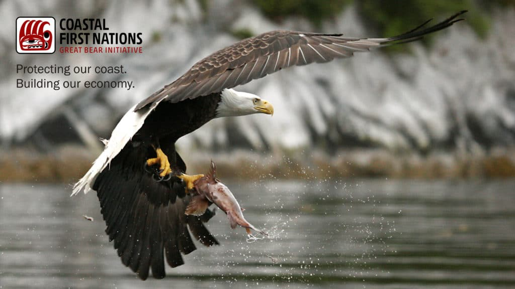 Coastal First Nations Eagle and Salmon Christine Smith-Martin