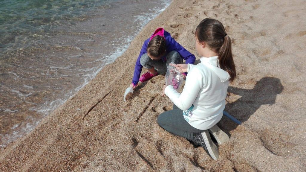 Observadors del Mar