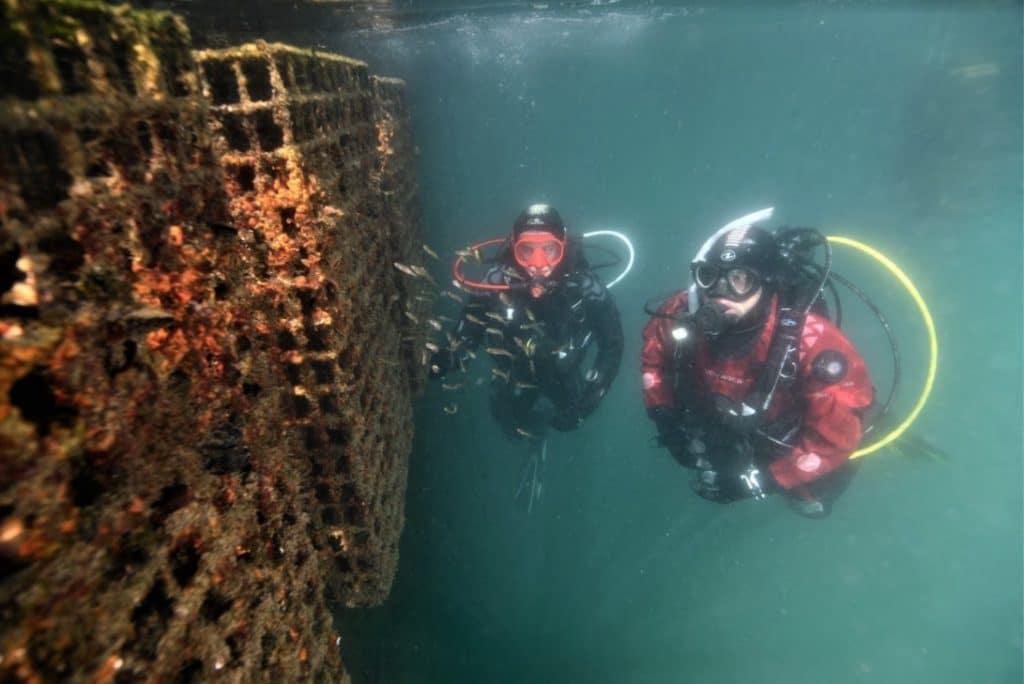 Ecocean BioHut
