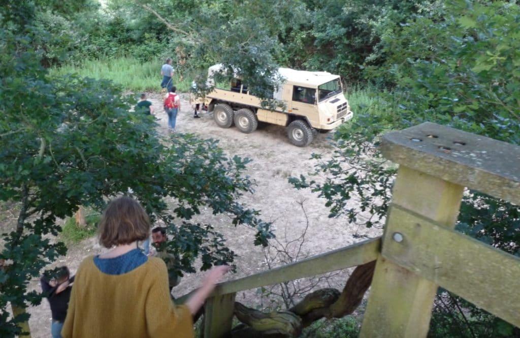 On safari at Knepp Wildland