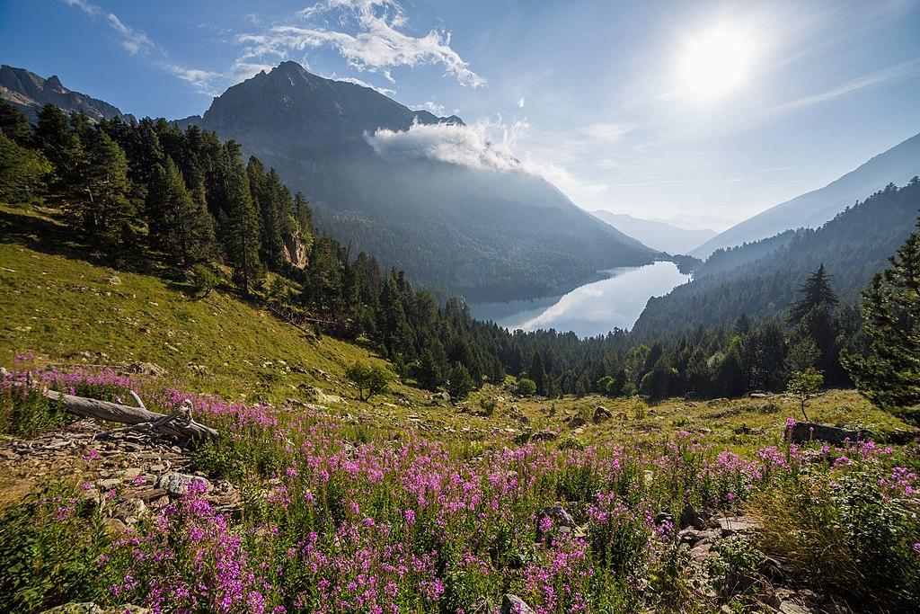 Observatori del Patrimoni Natural i la Biodiversitat
