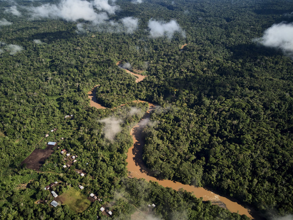 Amazon river view from above